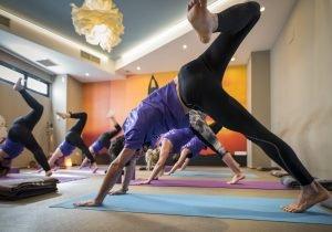 Enfoque de Yoga Esencial: Simplicidad, honestidad y vivencia directa